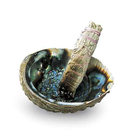 Abalone Shell Incense Holder & Stand - Women's Romantic & Fantasy Inspired Fashions