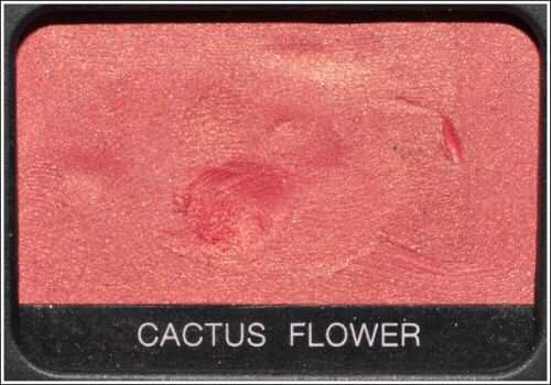 cactus flower eyeshadow