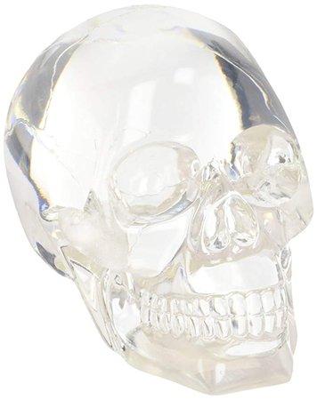 Amazon.com: Clear Translucent Skull Collectible Figurine: Gateway