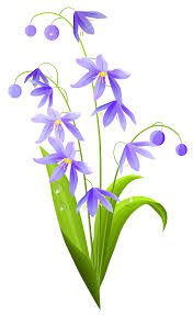 spring flowers clip art - Google Search