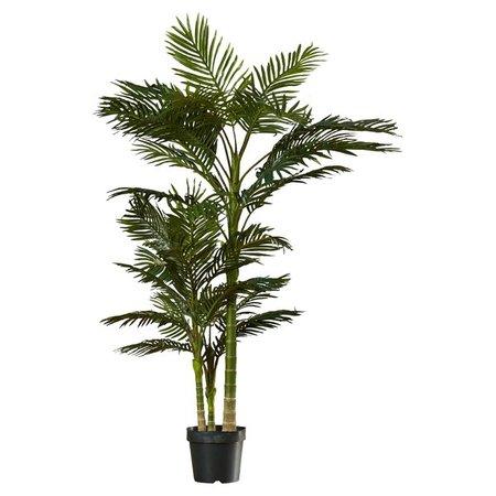 Beachcrest Home Brookings Floor Palm in Pot & Reviews | Wayfair