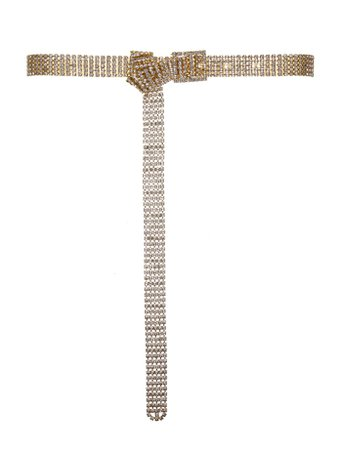 Gold Crystal Waist Belt - Handbags & Accessories