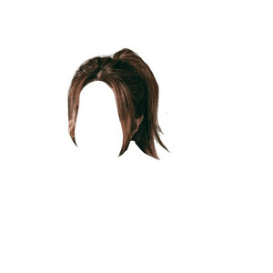 brown hair png ponytail