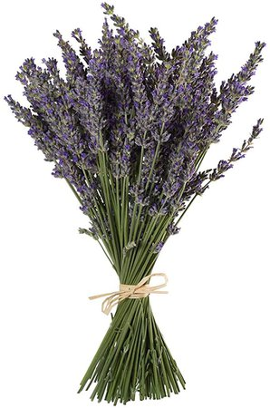 """TooGet Natural Lavender Bundles, Freshly Harvested 100 Stems Dried Lavender Bunch 16"""" - 18"""" Long, Decorative Flowers Bouquet for Home Decor, Crafts, Gift, Wedding or Any Occasion: Amazon.com: Grocery & Gourmet Food"""