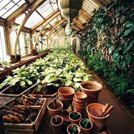 Herbology Classroom Hogwarts School | Harry Potter