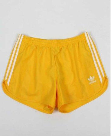 Sunshine shorts