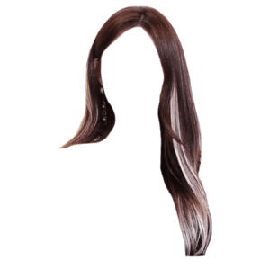 brown hair with white/blonde streaks png
