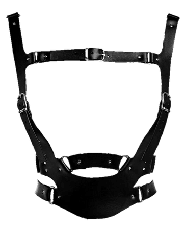 Harness PNG