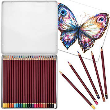 24 Pack Premium Watercolor Coloring Pencil Set - Soft Core Drawing Pencils in Travel Case for Students, Artists and Adult Coloring Books: Amazon.ca: Home & Kitchen