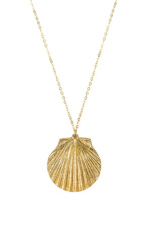 Jumbo Shell Necklace
