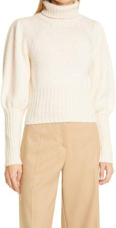 Catarina Wool Blend Turtleneck Sweater