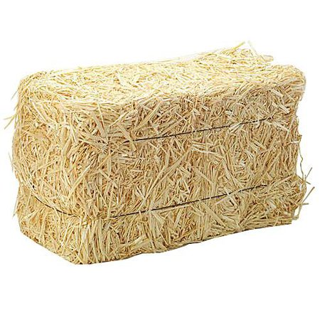 12 Inch Straw Bale - Stumps