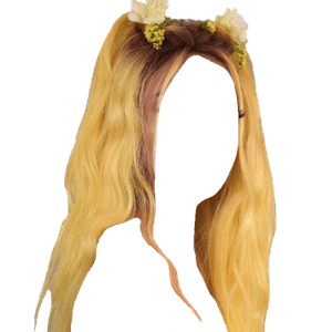 Yellow Hair PNG