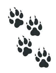 wolf paw tattoo - Google Search