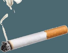 PNG - Smokey.png