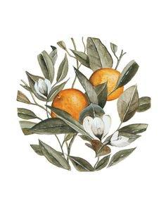 Orange arts