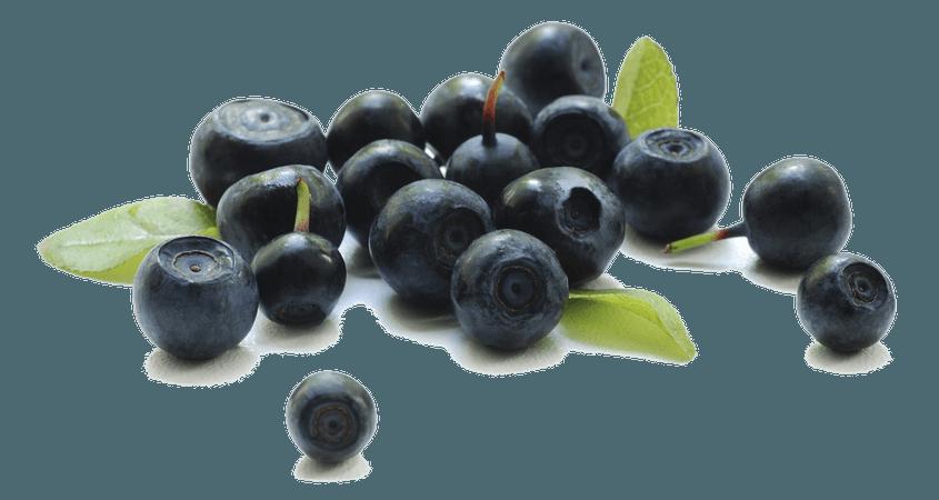 Berries Transparent Background | PNG Mart