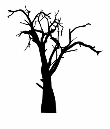 Dead Tree Silhouette Transparent Png Spooky Tree Png - Dead Tree Silhouette Png Free PNG Images & Clipart Download #247081 - Sccpre.Cat