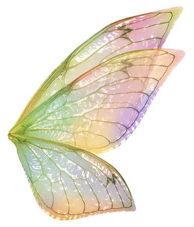 fairy wing png - Pesquisa Google