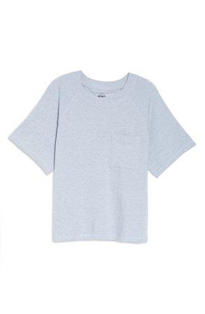 Madewell MWL Skyterry Raglan T-Shirt | Nordstrom