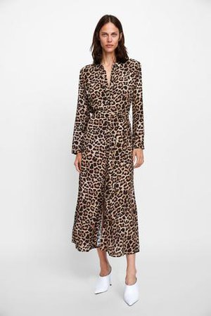 zara leopard dress - Pesquisa Google