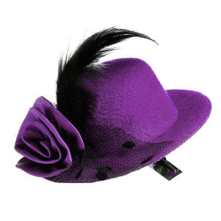 Fancy Purple Hat