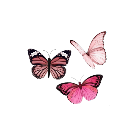 butterfly, cyber, overlay and png - image #7615332 on Favim.com