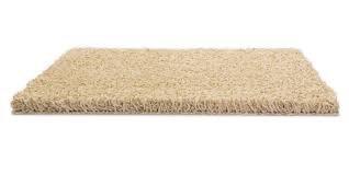 floor rug png - Google Search