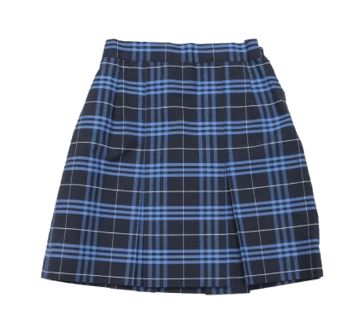blue plaid skirt png