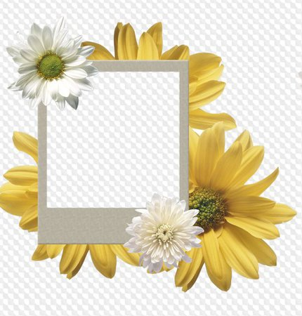 Polaroid frames png, download - free 28 polaroid photo frames. Transparent PNG Frame, Layered PSD Photo frame template, Download.