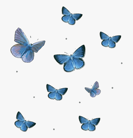 Butterflies, Butterfly, And Editing Image - Transparent Background Blue Butterfly Png, Png Download - kindpng