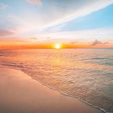 sunset - Google Search