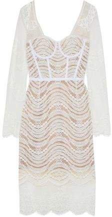 Grosgrain-trimmed Corded Lace Dress