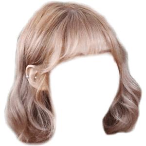 Light Brown Blonde Hair PNG