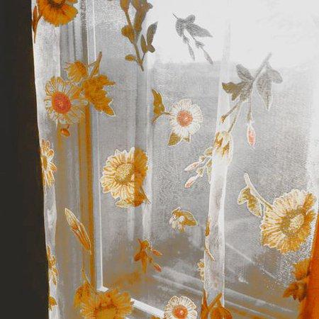 orange yellow aesthetic photography