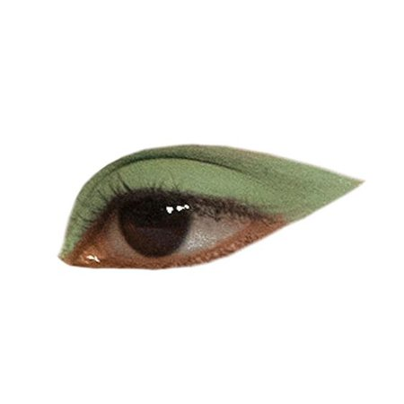 green brown eye png filler