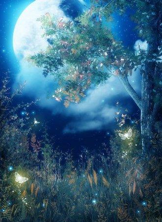 Magic grimm cartoon background | Beautiful moon in 2019 | Fantasy background, Background for photography, Fantasy landscape
