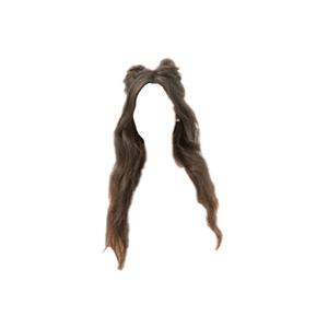 Long Brown Hair Space Buns PNG
