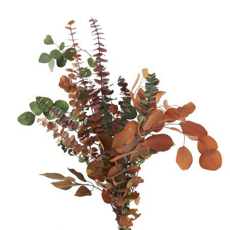 Ashland® Eucalyptus Multi Leaf