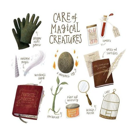 Harry Potter Care of Magical Creatures