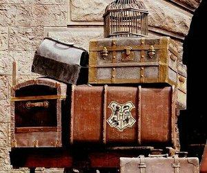 Trunk | Harry Potter