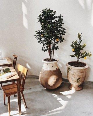 Jacquemus's New Paris Café Is as Instagrammable as You'd Expect Photos | W Magazine