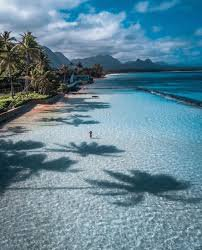 tropical beach - Google Search