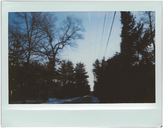moodboard aesthetic niche filler polaroid picture photo...