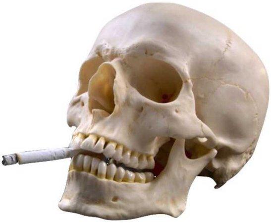 cigarette skull png