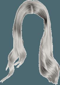 Google Image Result for https://huntpng.com/images250/silver-hair-png-18.png