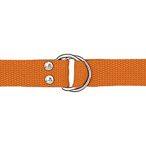 Orange D-ring Belt