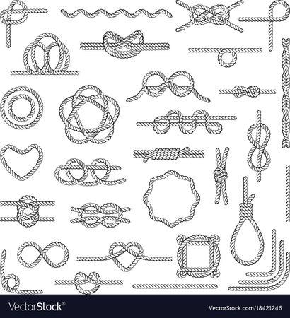 Nautical rope knots Royalty Free Vector Image - VectorStock