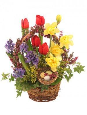 Easter Flowers Spring Green, WI   Prairie Flowers & Gifts