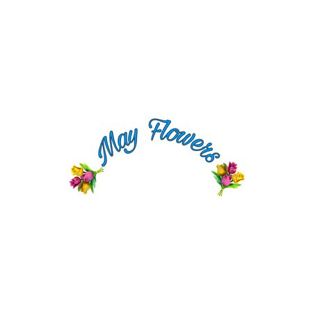 💐May Flowers💐 Text